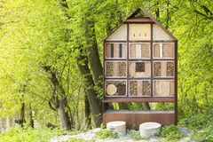 Manmade insect hotel in a green forest Royalty Free Stock Images