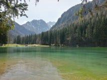 Manmade jezioro Zdjęcie Stock