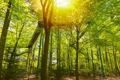 Manmade struktura i most doświadczać treetops przygody wyzwanie w lesie obrazy royalty free