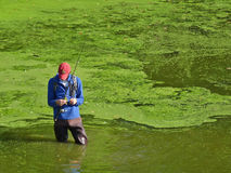 Mann Attaches fliegen zur Fischereizeile Lizenzfreie Stockbilder
