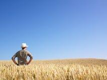Mann auf dem Weizen-Gebiet Lizenzfreie Stockbilder