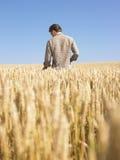 Mann auf dem Weizen-Gebiet Stockfotografie
