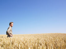 Mann auf dem Weizen-Gebiet Stockbilder