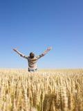 Mann auf dem Weizen-Gebiet mit den Armen ausgestreckt Stockfotografie