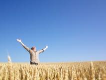 Mann auf dem Weizen-Gebiet mit den Armen ausgestreckt Stockfotos