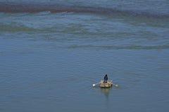 Mann auf dem Yak-Haut-Boot, das Fluss Yarlung Tsangpo in Tibet kreuzt Lizenzfreies Stockfoto