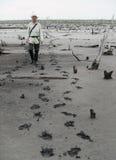 Mann auf einem Sumpf Lizenzfreie Stockfotos