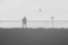 Mann auf einer Brücke mit Fliegen-Vogel Stockfotografie