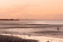 Mann auf gehendem Hund des Strandes am Sonnenuntergang Lizenzfreies Stockbild