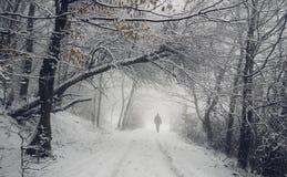 Mann auf Straße im Winterholz Stockbilder