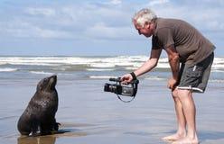 Mann auf Strand mit einer Dichtung Lizenzfreies Stockfoto
