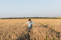 Mann auf Weizenfeld Stockfotos