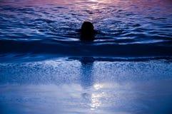 Mann bei Sonnenuntergang Stockbild