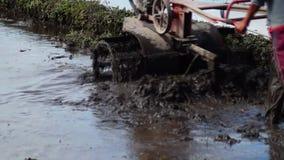 Mann benutzt mechanisierten Handtraktor auf dem entsetzlichen Reisgebiet stock video footage