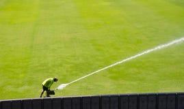 Mann Bewässerungsrawn Fußballrasenfläche stockbild