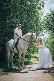 Mann, Braut und Schimmel im Park Stockbild