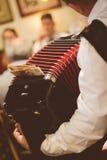 Mann, der Akkordeon spielt Lizenzfreies Stockfoto