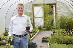 Mann, der Anlagen in der Garten-Mitte wählt Lizenzfreie Stockfotografie