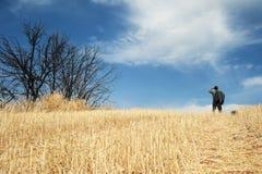 Mann, der auf einem Gebiet steht stockbilder