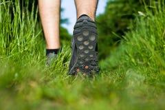 Mann, der auf grünes Gras im Wald geht Lizenzfreie Stockfotos