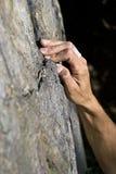 Mann, der auf Granit steigt Lizenzfreie Stockfotografie