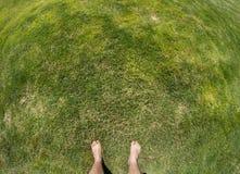 Mann, der auf Gras geht Stockbild
