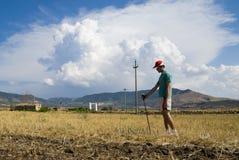 Mann, der auf trockenem Getreide steht Stockfotos
