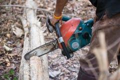 Mann, der das Holz mit Kettensäge schneidet Stockbild