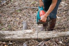Mann, der das Holz mit Kettensäge schneidet Stockfoto