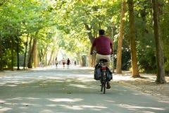 Mann, der in das Vondelpark in Amsterdam radfährt Stockbild