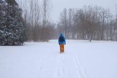 Mann, der in den Stadtpark während des schweren Schneesturmes, Toronto, Ontario, Kanada geht lizenzfreies stockbild