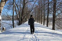 Mann, der in den Winterwald geht lizenzfreie stockbilder