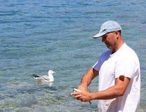 Mann, der die Fische vorbereitet Seemöwe, die in Meer wartet Lizenzfreies Stockbild