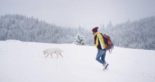 Mann, der durch den Schnee in der Spitze des schneebedeckten Waldes mit einem weißen Gebirgshund hinten, Ansicht herum überrasche stock video