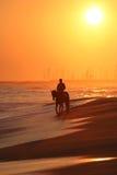 Mann, der ein Pferd auf Strand reitet Stockfoto