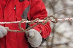 Mann, der ein Seil knotet Stockfoto