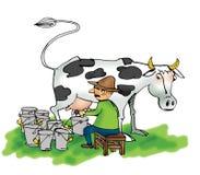 Mann, der eine Kuh milk Stockbilder