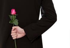 Mann, der eine Rose anhält Stockbild