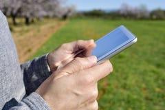Mann, der eine Tablette in einer Waldung von Mandelbäumen verwendet stockbilder