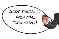 Mann, der einem Zeichen Halt weibliche genitale Verstümmelung schreibt Lizenzfreie Stockbilder
