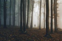 Mann, der in Fantasieherbstwald geht Lizenzfreies Stockbild