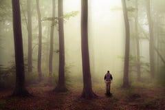 Mann, der in furchtsamen Wald mit Nebel geht Lizenzfreie Stockbilder