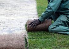 Mann in der grünen Form, die Rasen für neuen Gartenrasen legt Stockfotos