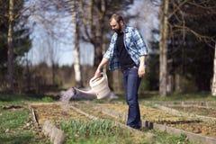 Mann, der im Garten arbeitet Stockbild