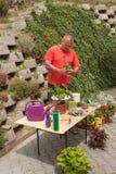 Mann, der im Garten arbeitet Gärtner gleicht Blumen aus Stockfotos