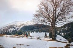 Mann, der im schönen Winterberg wandert Stockfotos