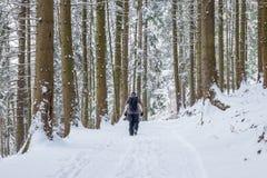 Mann, der im Wald auf eine schneebedeckte Straße geht lizenzfreies stockbild