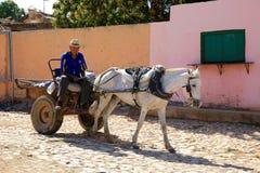 Mann, der Kohle, Trinidad, Kuba liefert Stockfotografie