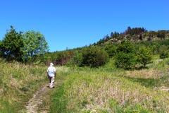Mann, der in Landschaftsfußweg mit Bäumen geht stockfotos
