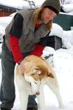 Mann, der mit einem Schlittenhund spielt Lizenzfreies Stockfoto